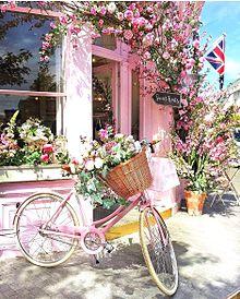 バラの花と自転車  おしゃれ  写真右下のハートを押してねの画像(車 おしゃれに関連した画像)