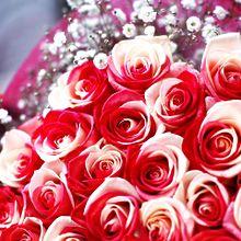 バイカラーローズの花束  写真右下のハートを押してねの画像(ローズに関連した画像)