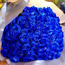 ブルーローズ の花束  写真右下のハートを押してねの画像(ブルーに関連した画像)