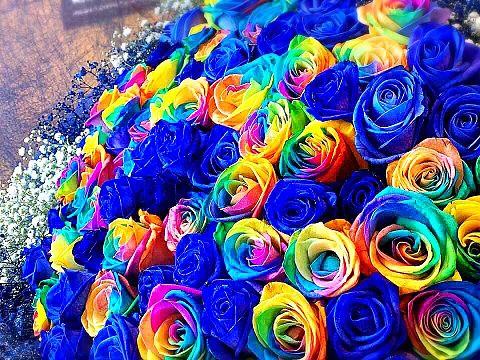 ブルーローズとレインボーローズの花束  ハートを押してねの画像 プリ画像