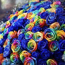 豪華なバラの花束  写真右下のハートを押してね プリ画像