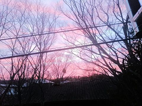 空背景きれいの画像 プリ画像