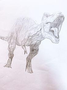 Tレックスの画像(ティラノサウルスに関連した画像)