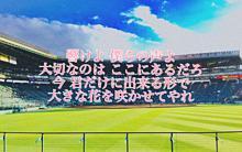 心に響く、応援歌の画像(大阪桐蔭に関連した画像)