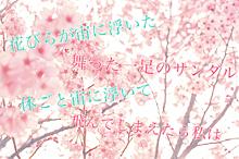 花降らしの画像(花に関連した画像)