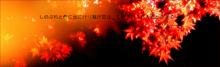 遠山和葉〜から紅の恋歌〜の画像(恋歌に関連した画像)