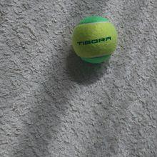 テニスボール プリ画像