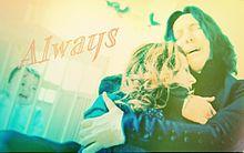 Alwaysの画像(セブルス・スネイプに関連した画像)