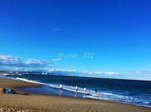 秋海の画像(プリ画像)