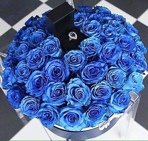 青い花 綺麗の画像(プリ画像)
