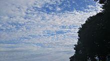 空2の画像(電線に関連した画像)