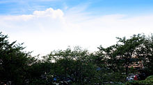 空の画像(#綺麗に関連した画像)