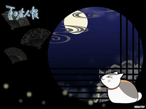暗闇で光る月を眺めるにゃんこ先生。