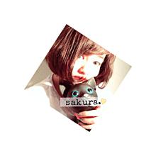 sakuraちゃん プリ画像