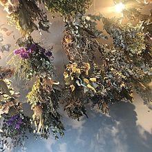 landscape プリ画像