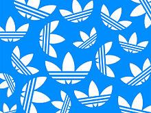 →ひなさん/りくえすと←の画像(ホワイト/ブルーに関連した画像)