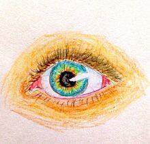 青い瞳の画像(青い瞳に関連した画像)