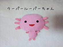 ウーパールーパーちゃん(?) (手作り笑)の画像(ウーパールーパーに関連した画像)