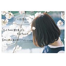加工画桜かわいいかっこいい素材青春パステルロック画の画像(たばこに関連した画像)