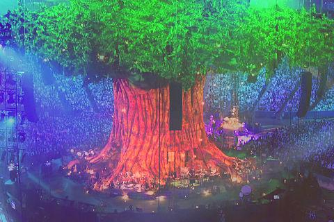 セカオワ 巨大樹/Tarkusの画像 プリ画像