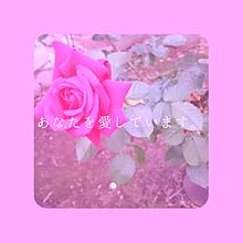 バラ🌹  花言葉▶▶▶あなたを愛しています。の画像(あなたを愛していますに関連した画像)