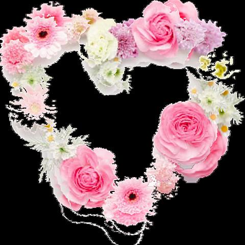 花🌹 ハート︎︎︎❤︎ 背景透過[76268111]|完全無料画像検索のプリ画像 byGMO