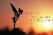 Calling/じぇにー。の画像(プリ画像)