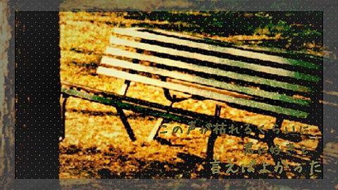 青いベンチ/サスケの画像 プリ画像