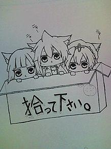 すてぬこ信号機トリオの画像(プリ画像)