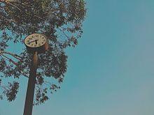 風景の画像(空に関連した画像)