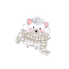 かわいいハリネズミのイラスト【ハリネズミのソフィー】 プリ画像