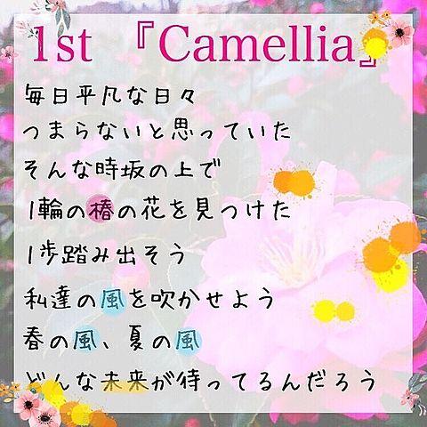 椿坂46  1stシングル Camellia 歌詞の画像(プリ画像)