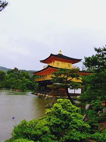 金閣寺 プリ画像