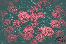 LoveLoveheart プリ画像