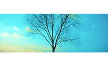 Spring Dayの画像(Springに関連した画像)