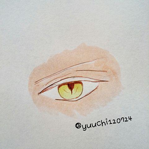 カルラの目の画像(プリ画像)