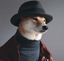 柴犬の画像(プリ画像)