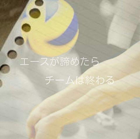 バレーボールの画像(プリ画像)