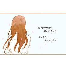 桜の画像(恋/片思い/失恋に関連した画像)