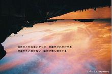 ⑤の画像(#いいねに関連した画像)