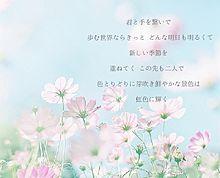 虹の音/藍井エイルの画像(プリ画像)