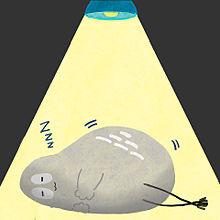 おやすみハトくんの画像(人気に関連した画像)