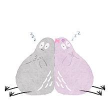 ハトくんのお昼寝の画像(人気に関連した画像)
