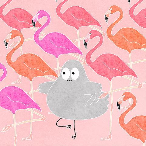 ハトくんとフラミンゴの画像(プリ画像)