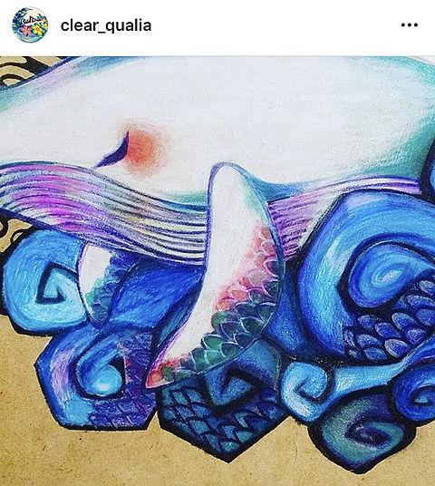 〰️白鯨〰️の画像 プリ画像