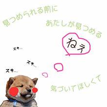 aiko 歌詞画 プリ画像