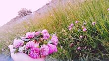 花かんむり。 プリ画像