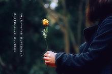 恋と唄 : MGAの画像(プリ画像)