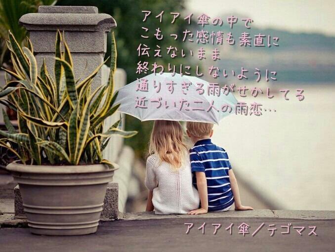 アイアイの画像 p1_29