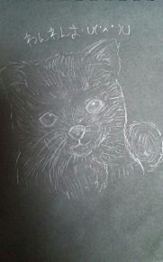 黒い紙手に入ったんで、シャーペンで犬描いてみたったw プリ画像